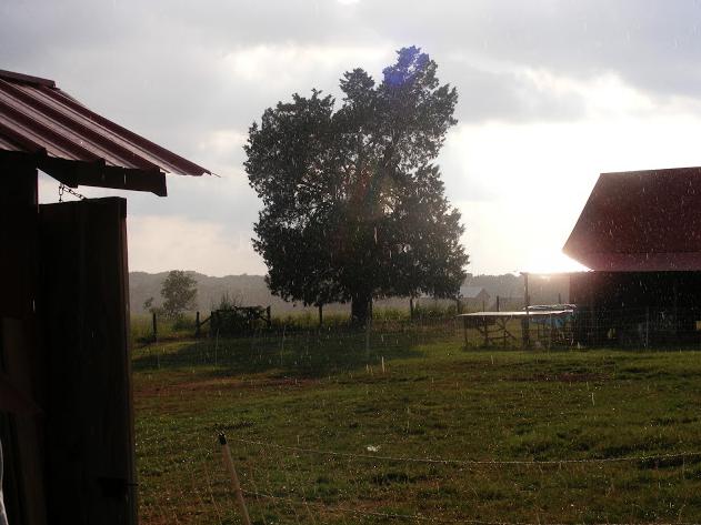 Stauber Farm
