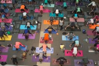 Free Community Yoga at Wake Forest Innovation Quarter, Winston-Salem, Townies Winston-Salem events