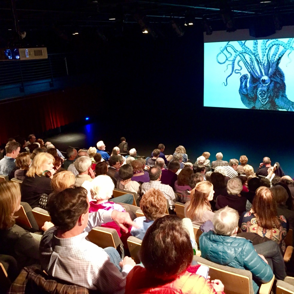 Opening Night of RiverRun Film Festival at HanesBrands Theater | Photo by Libby Snyder